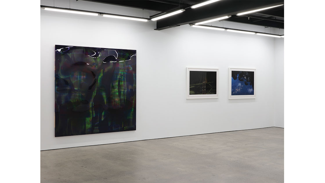 """""""Doors of Perception,"""" install at Visions Gallery, Auckland, 2021"""