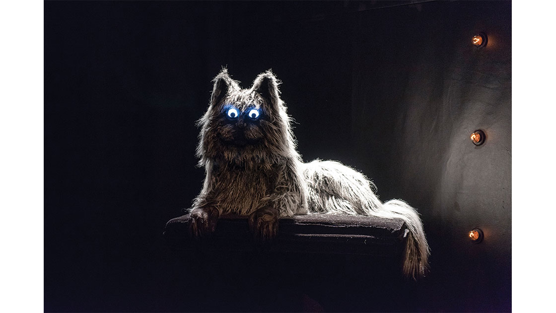 Cat puppet created by Tarryn Gill, photographed by Christophe Canato